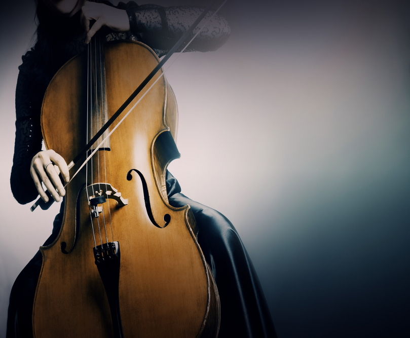 cello groot 809x667